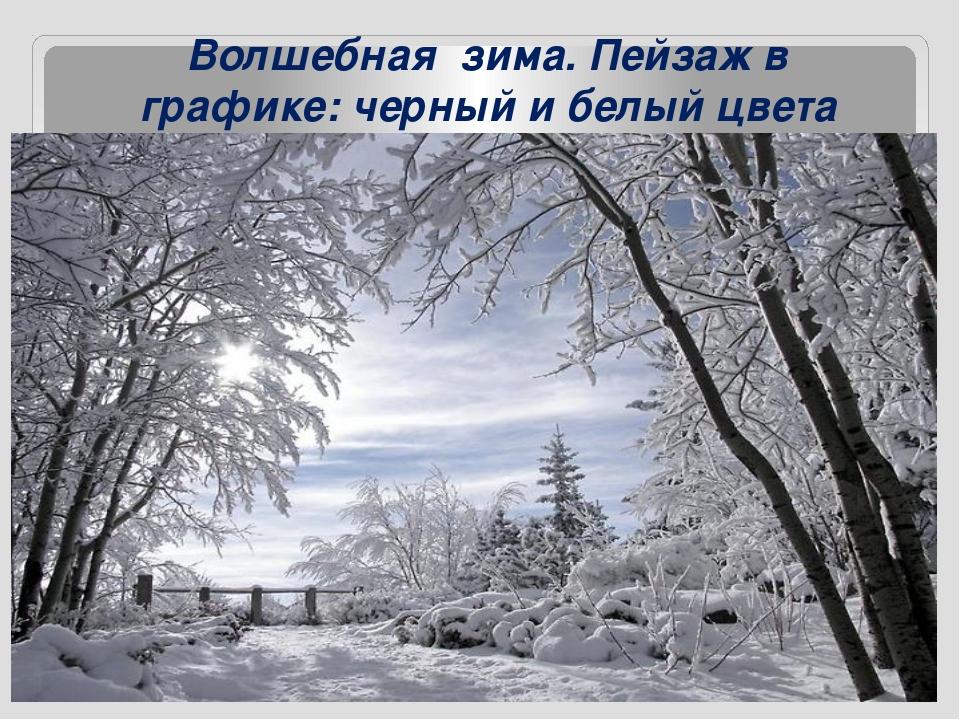 Волшебная зима. Пейзаж в графике: черный и белый цвета
