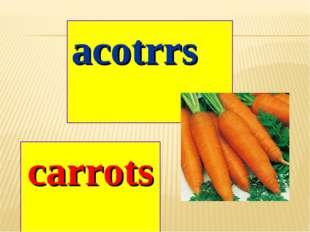 acotrrs carrots