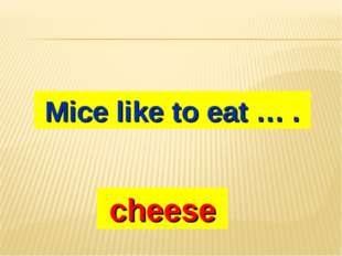 Mice like to eat … . cheese