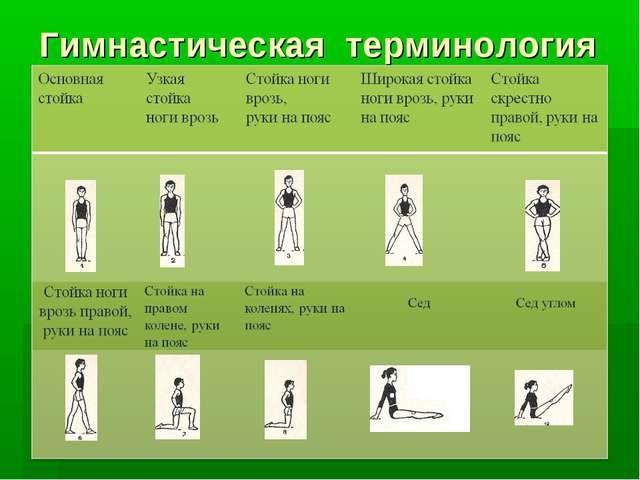 Гимнастическая терминология