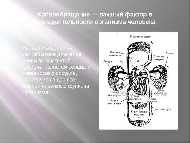 Кровообращение — важный фактор в жизнедеятельности организма человека Кровооб...