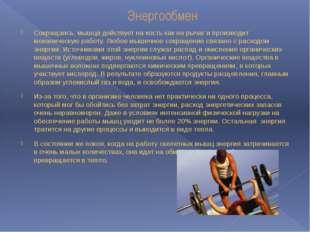 Энергообмен Сокращаясь, мышца действует на кость как на рычаг и производит ме