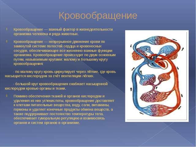 Кровообращение Кровообращение — важный фактор в жизнедеятельности организма ч...