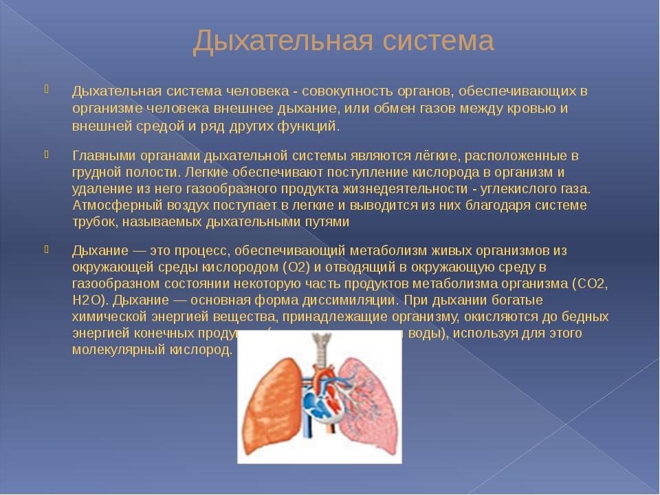 Дыхательная система Дыхательная система человека - совокупность органов, обес...