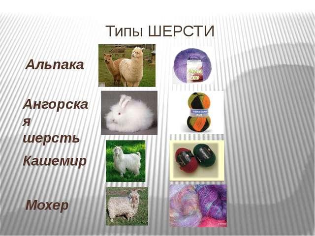 Типы ШЕРСТИ Альпака Ангорская шерсть Кашемир Мохер