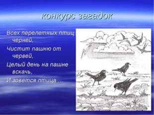 конкурс загадок Всех перелетных птиц черней, Чистит пашню от червей, Целый де