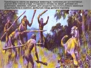 Преобладала охота на крупных животных, требовавшая коллективных усилий всех