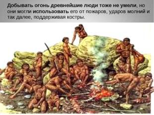 Добывать огонь древнейшие люди тоже не умели, но они могли использовать его