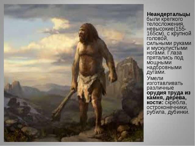 Неандертальцы были крепкого телосложения, невысокие(155-165см), с крупной го...