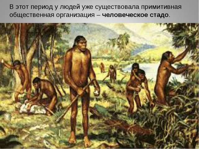 В этот период у людей уже существовала примитивная общественная организация...