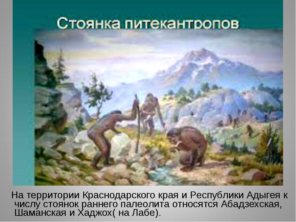 На территории Краснодарского края и Республики Адыгея к числу стоянок раннег...