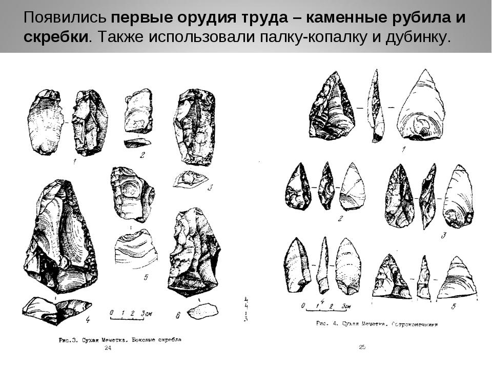 Появились первые орудия труда – каменные рубила и скребки. Также использовал...