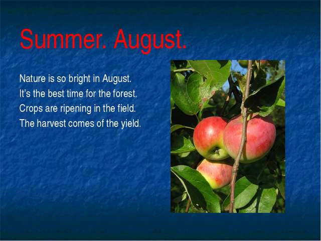 Summer. August. Nature is so bright in August. It's the best time for the for...