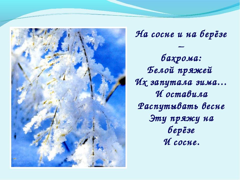 На сосне и на берёзе – бахрома: Белой пряжей Их запутала зима… И оставила Рас...