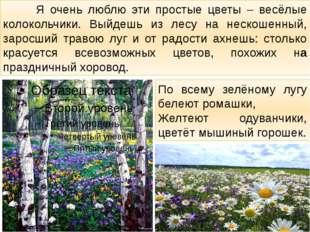 Я очень люблю эти простые цветы – весёлые колокольчики. Выйдешь из лесу на н