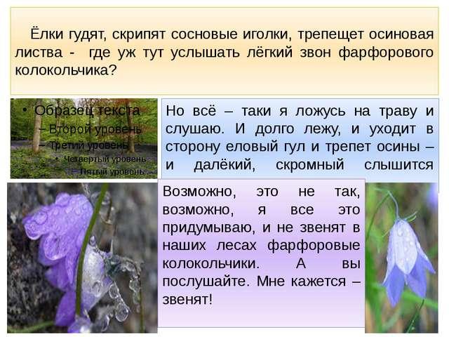 Ёлки гудят, скрипят сосновые иголки, трепещет осиновая листва - где уж тут у...