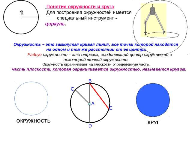 Окружность – это замкнутая кривая линия, все точки которой находятся на одно...