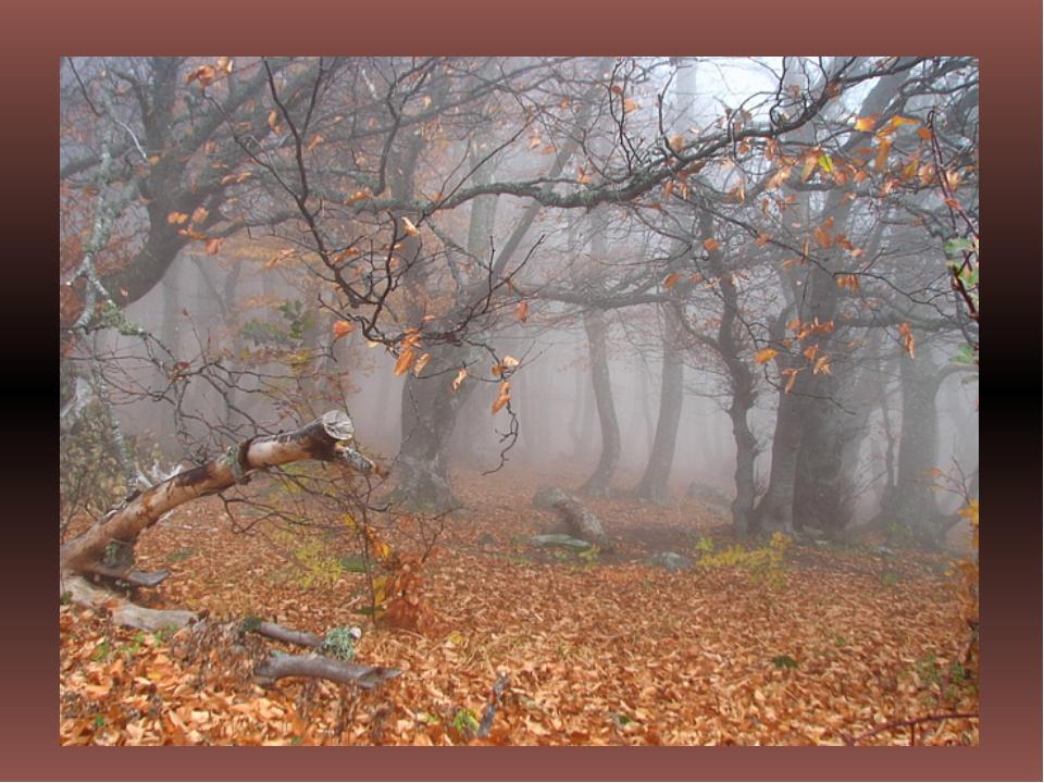 http://fs00.infourok.ru/images/doc/137/159969/img1.jpg
