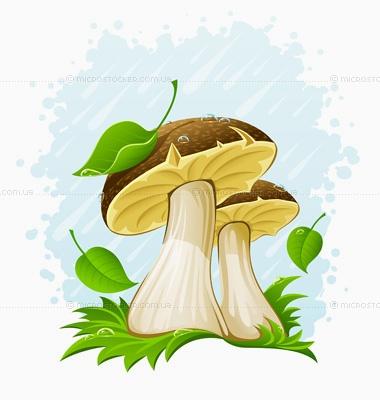 Грибы под дождем Белые грибы под дождем, нарисованные в векторе - иллюстрации купить в фотобанке Автор: LoopAll Хранилище