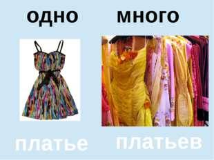 помидор помидоров один много платье платьев одно много