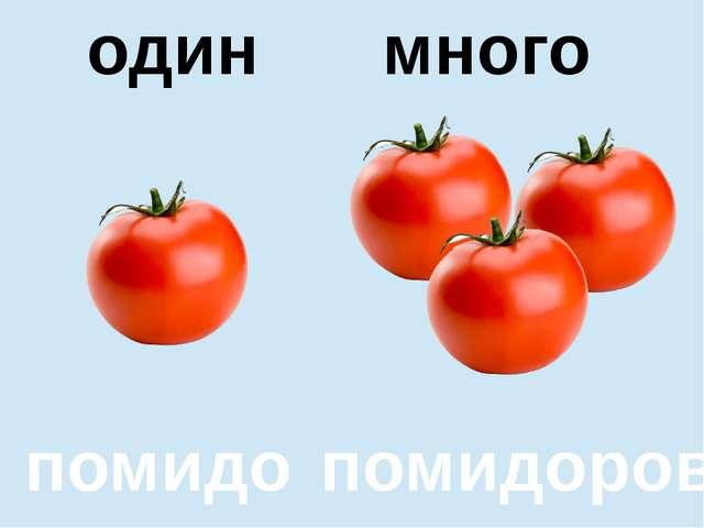 помидор помидоров один много один много помидор помидоров