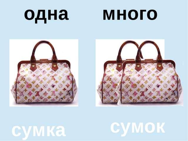 помидор помидоров один много сумка сумок одна много