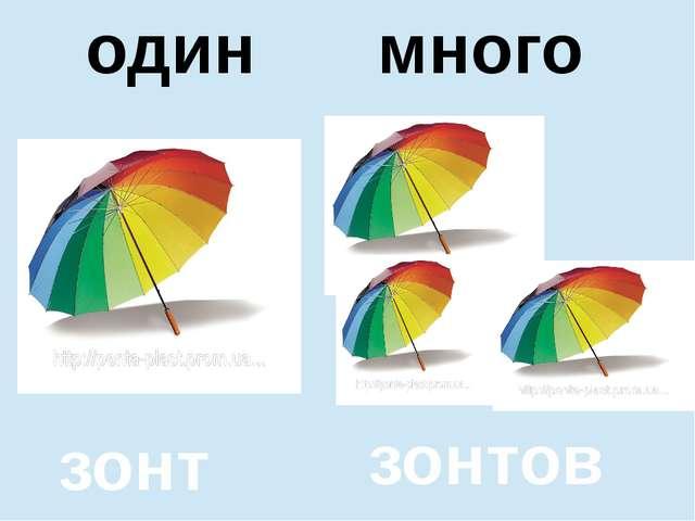 помидор помидоров один много один много зонт зонтов