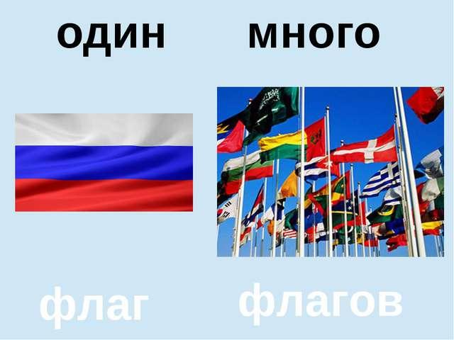 помидор помидоров один много один много флаг флагов