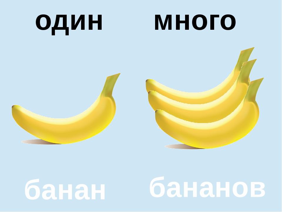 помидор помидоров один много один много банан бананов