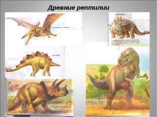 Древние рептилии