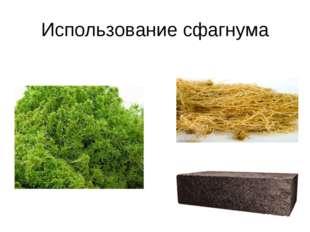 Использование сфагнума