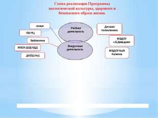 Схема реализации Программы экологической культуры, здорового и безопасного об
