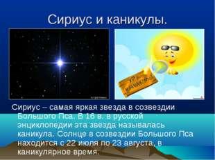Сириус и каникулы. Сириус – самая яркая звезда в созвездии Большого Пса. В 16