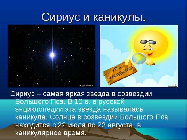 Сириус и каникулы. Сириус – самая яркая звезда в созвездии Большого Пса. В 16...