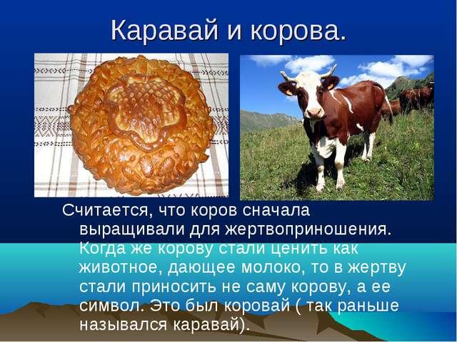 Каравай и корова. Считается, что коров сначала выращивали для жертвоприношени...