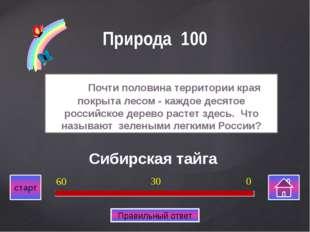 Енисей Эта красноярская спортивная команда является многократным чемпионом с