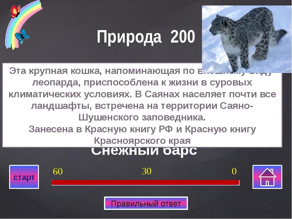 Дмитрий Миндиашвили Тренер по борьбе высшей категории, почетный гражданин Кр...