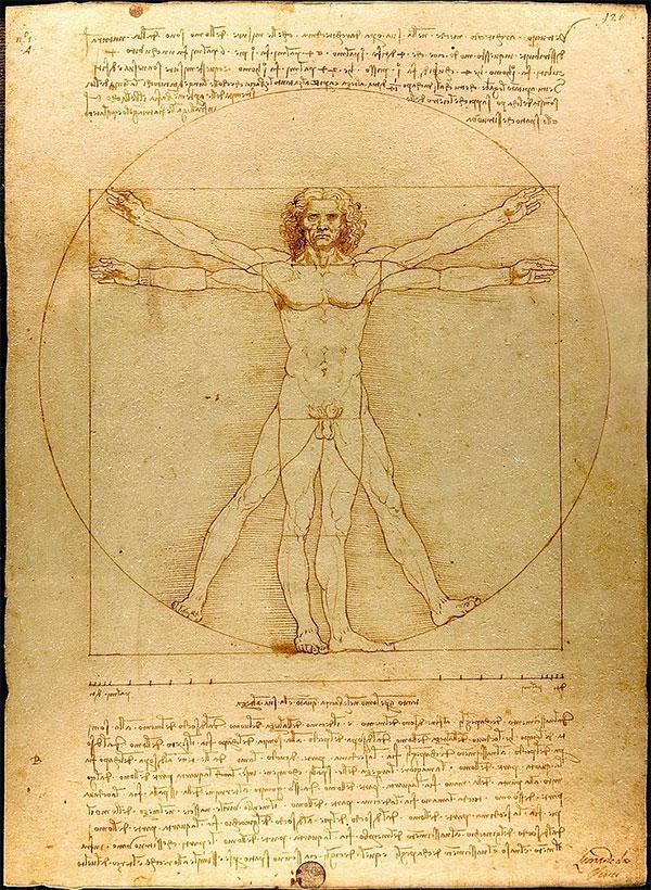 «Витрувианский человек» Леонардо да Винчи показывает пример билатеральной симметрии