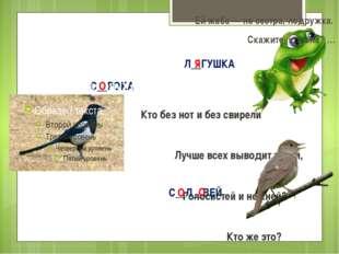 С__РОКА Непоседа пёстрая, Птица длиннохвостая, Птица говорливая, Самая болтл