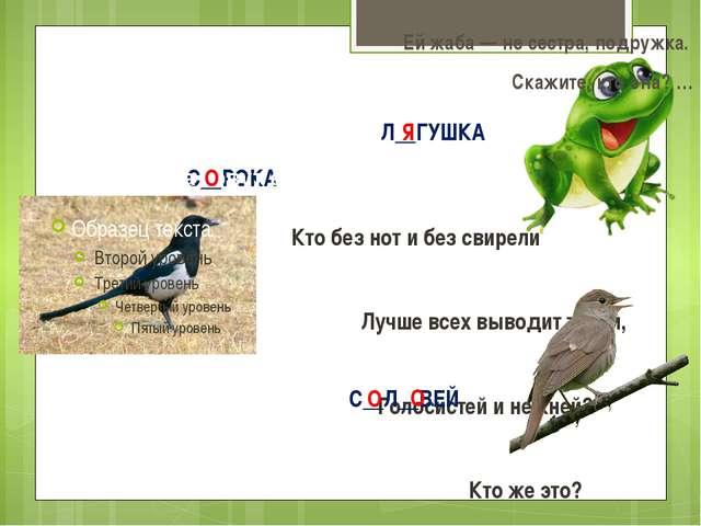 С__РОКА Непоседа пёстрая, Птица длиннохвостая, Птица говорливая, Самая болтл...