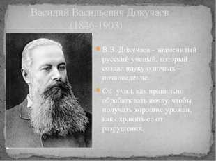В.В. Докучаев - знаменитый русский ученый, который создал науку о почвах – по