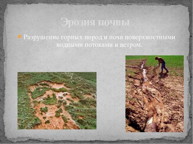 Разрушение горных пород и почв поверхностными водными потоками и ветром. Эроз...
