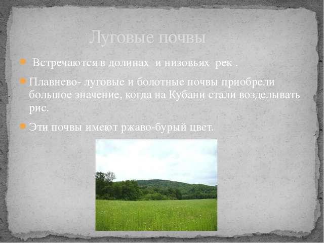 Встречаются в долинах и низовьях рек . Плавнево- луговые и болотные почвы пр...
