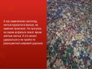А как замечателен листопад, листья кружатся в вальсе, не замечая прохожих. На