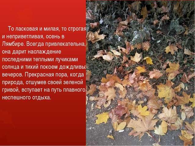 То ласковая и милая, то строгая и неприветливая, осень в Лямбире. Всегда при...
