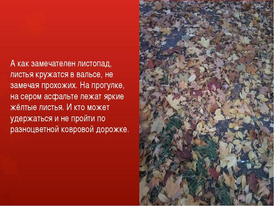 А как замечателен листопад, листья кружатся в вальсе, не замечая прохожих. На...