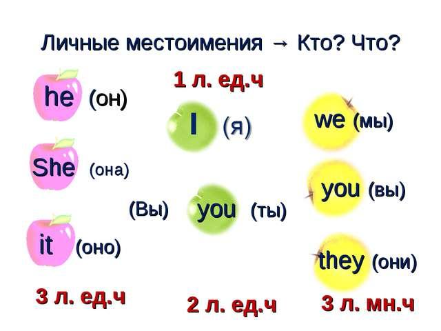 you (ты) Личные местоимения → Кто? Что? (Вы) he (он) we (мы) you (вы) they (...