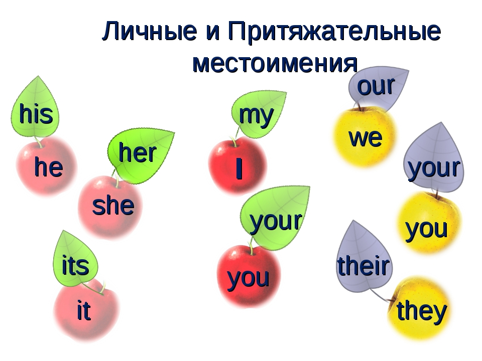 she it I you we you they my your his her its our your their he Личные и Притя...