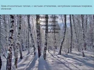 Зима относительно теплая, с частыми оттепелями, неглубоким снежным покровом,