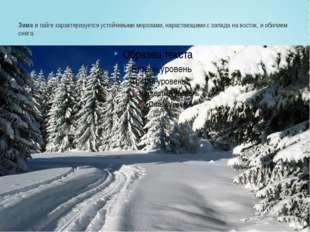 Зимав тайге характеризуется устойчивыми морозами, нарастающими с запада на в